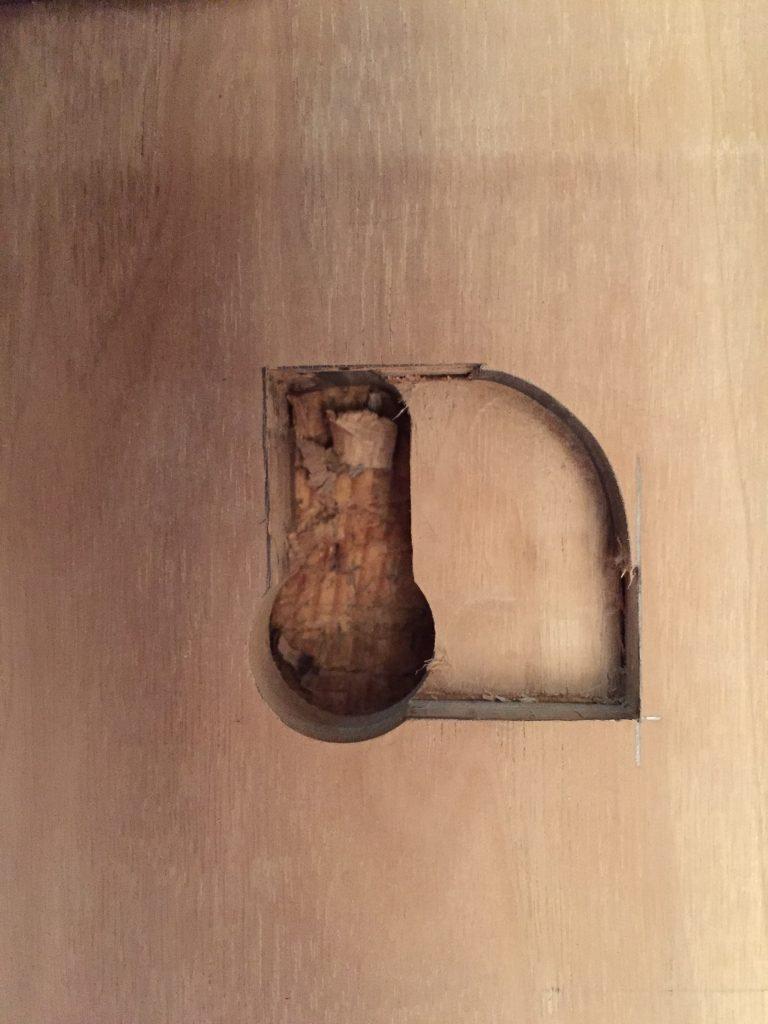 cabinet-de-curiosite2