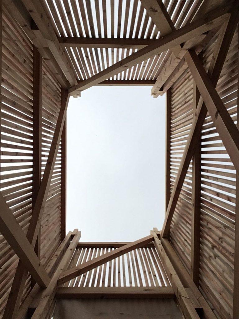 Wood_sky